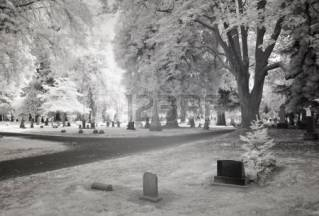 17307834-infrared-photo-of-lone-fir-cemetery-in-portland-oregon